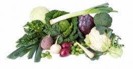 Welches Gemüse kann ich entsaften Test